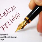 palyazati_felhivas-nea